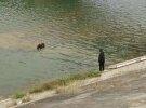 大埔一老人走下河中