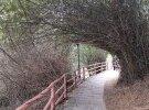 河头长寿公园一梅硿古道