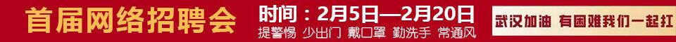 大埔县2020年首届春季网络招聘会