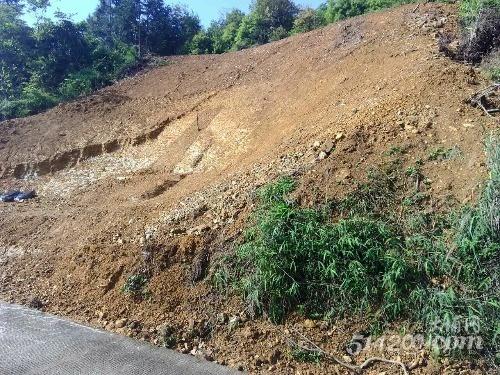 在村道旁大肆修建坟墓,影响村容村貌!