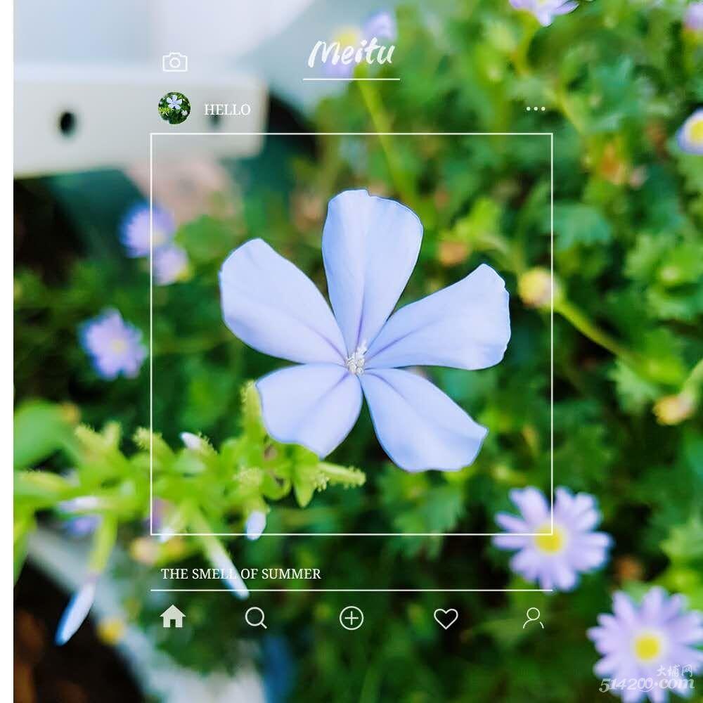 蓝6.jpg