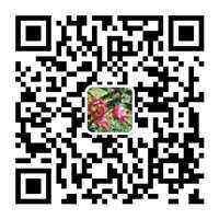 7581ba2efb4908c045aeab96ab2196b2_副本.jpg