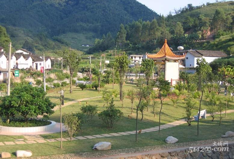 大埔有這樣一個鎮,全省出名,你去過嗎?