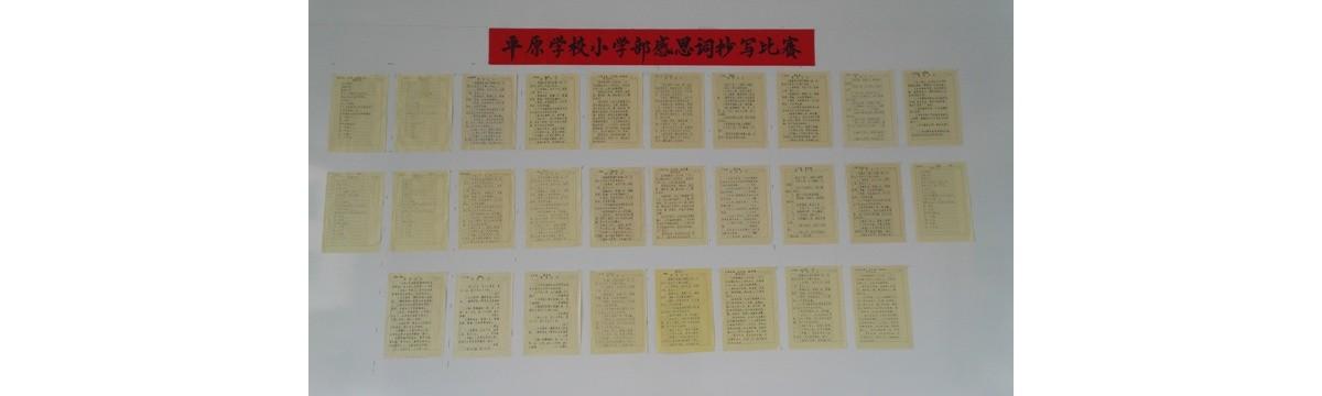 平原学校举行感恩词抄写比赛